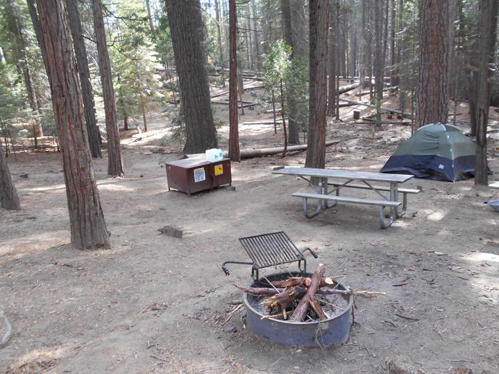 Hodgdon Meadow CampgroundSite 023
