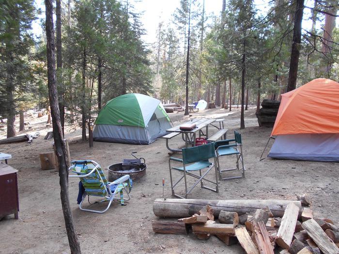 Hodgdon Meadow CampgroundSite 038
