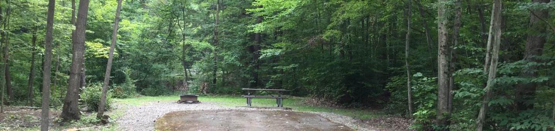 Kiasutha Recreation Area: Site 36