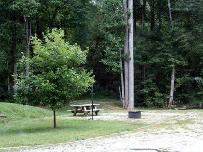 Whetstone Horse Camp-Site 009