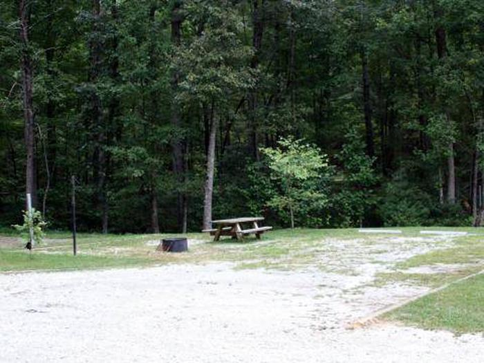Whetstone Horse Camp-Site 010