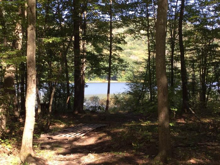 Kiasutha Recreation Area: Site 39