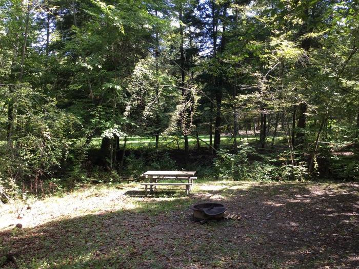 Kiasutha Recreation Area: Site 48