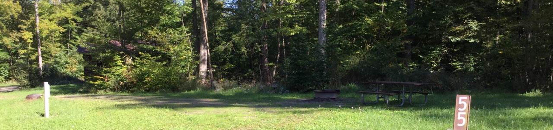 Kiasutha Recreation Area: Site 55