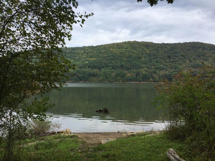Kiasutha Recreation Area: Site 64