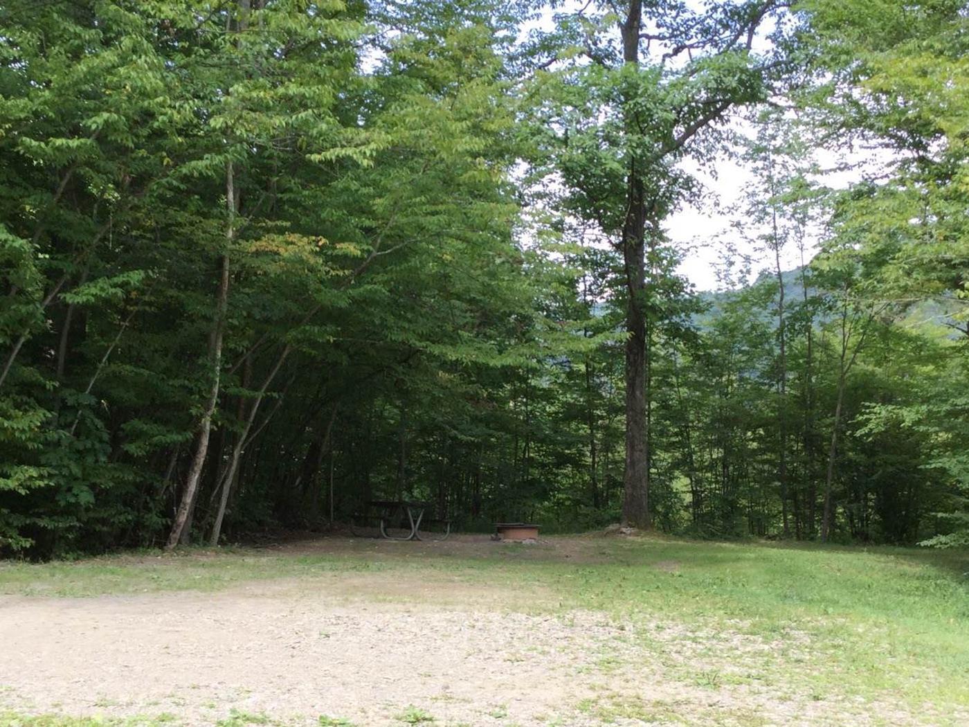 Kiasutha Recreation Area: Site 66