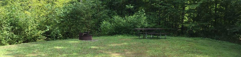 Kiasutha Recreation Area: Site 67