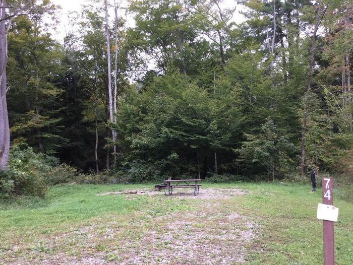 Kiasutha Recreation Area: Site 74