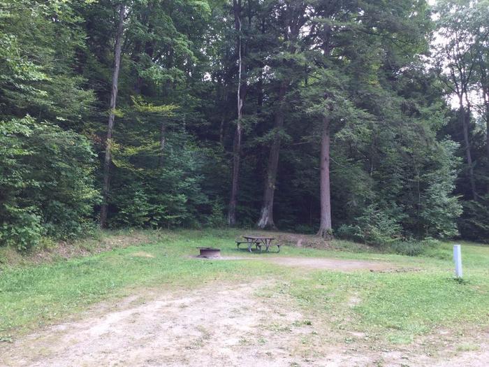Kiasutha Recreation Area: Site 78