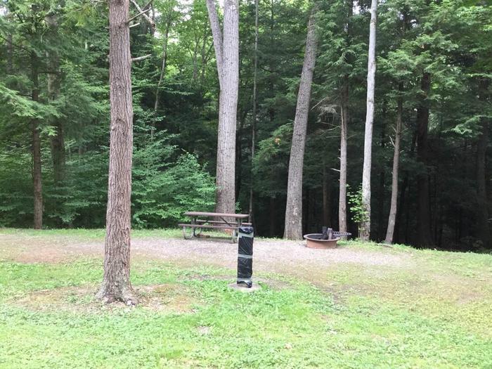 Kiasutha Recreation Area: Site 82