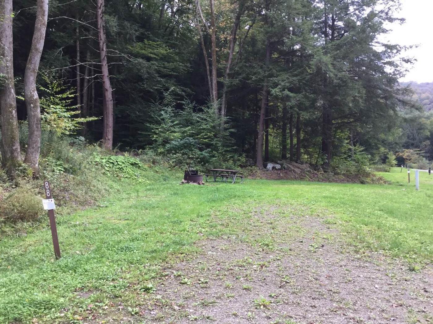 Kiasutha Recreation Area: Site 88