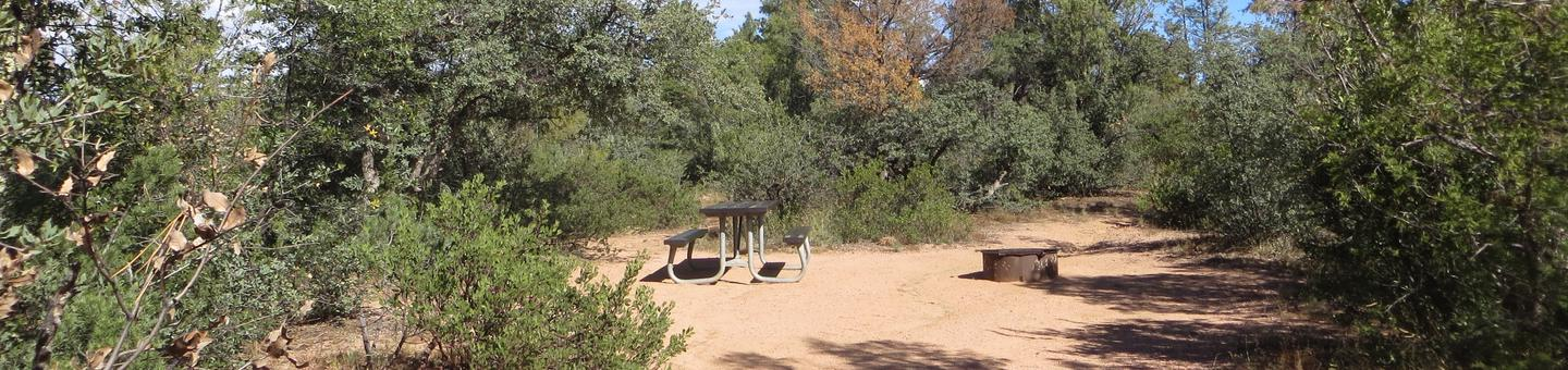 Houston Mesa, Elk Loop site #02 featuring large camping space with picnic table and fire pit.