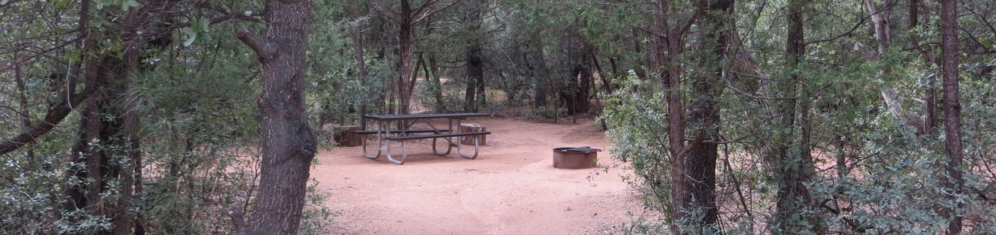 Houston Mesa, Mountain Lion Loop site #03 featuring large camping space with picnic table and fire pit.