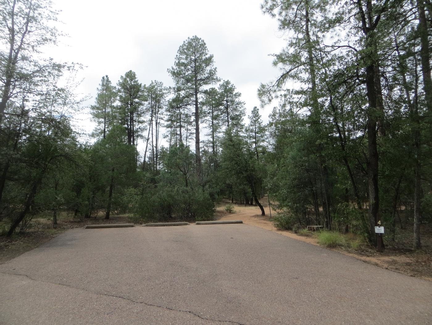 Houston Mesa, Black Bear Loop site #04 featuring parking, entrance to the wooded site, and camping space.
