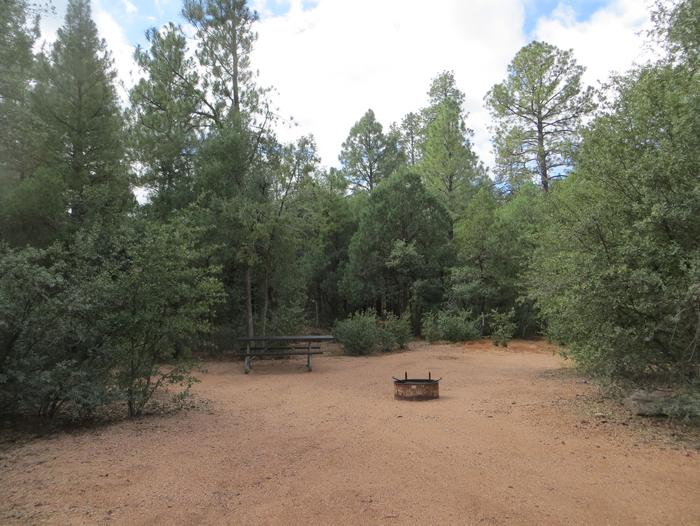 Houston Mesa, Mountain Lion Loop site #04 featuring large camping space with picnic table and fire pit.