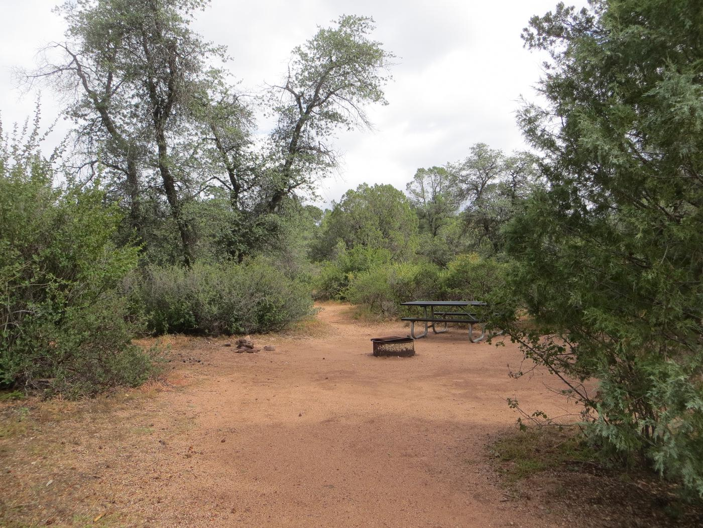 Houston Mesa, Mountain Lion Loop site #11 featuring large camping space with picnic table and fire pit.