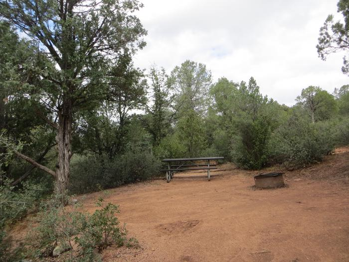 Houston Mesa, Mountain Lion Loop site #13 featuring large camping space with picnic table and fire pit.