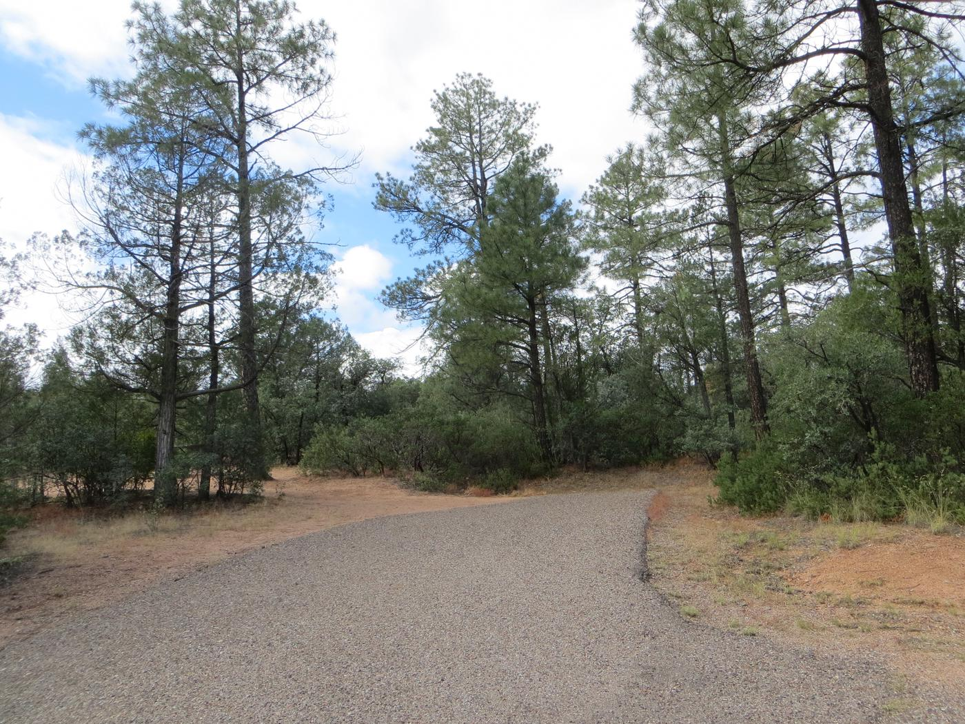 Houston Mesa, Elk Loop site #13 featuring parking and entrance to the wooded site.