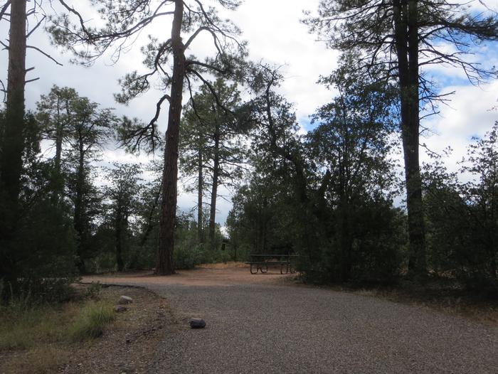 Houston Mesa, Elk Loop site #14 featuring parking, entrance to the wooded site, and picnic table.