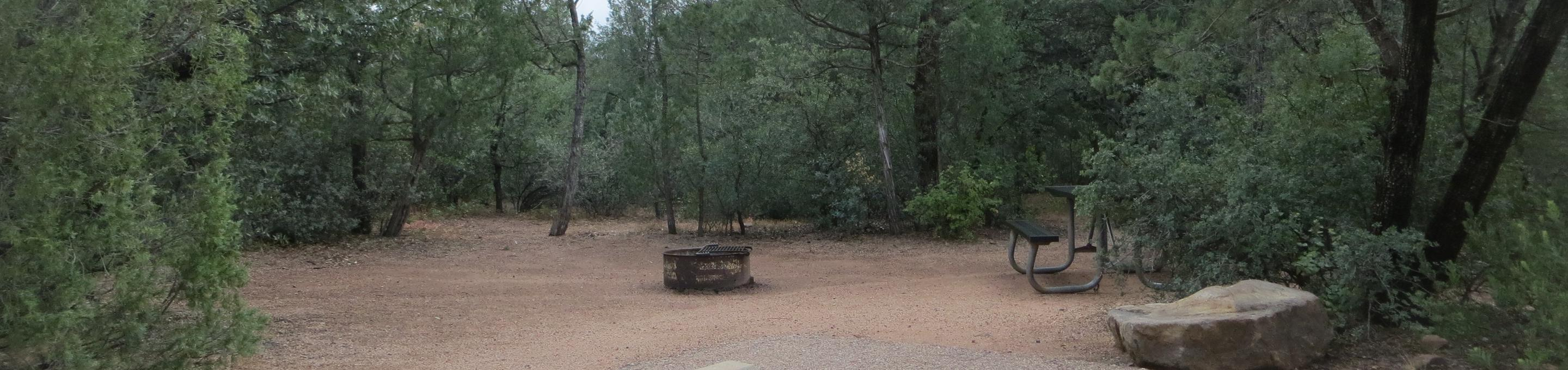 Houston Mesa, Mountain Lion Loop site #14 featuring large camping space with picnic table and fire pit.