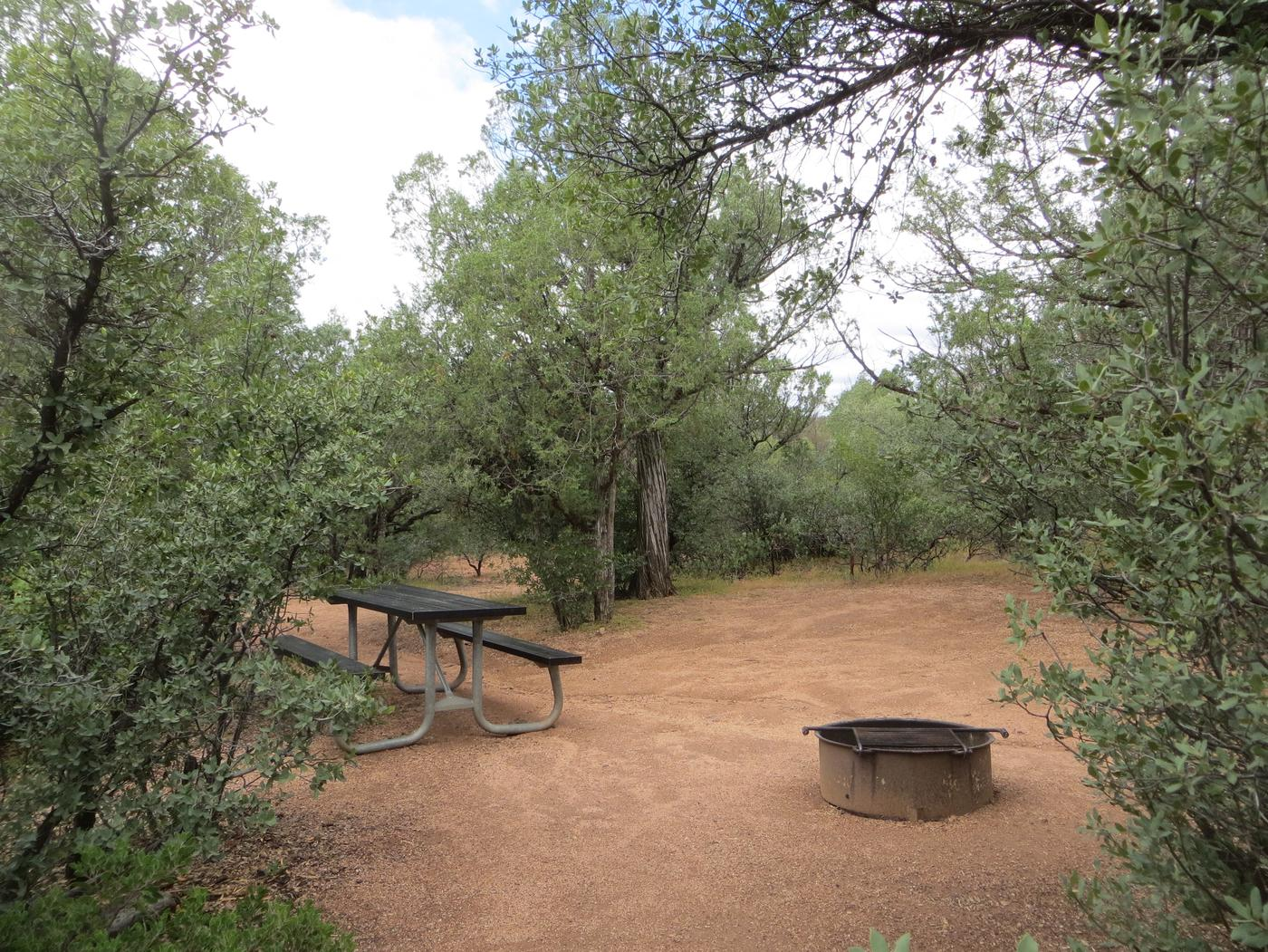 Houston Mesa, Mountain Lion Loop site #15 featuring the wooded camping space, fire pit, and picnic table.