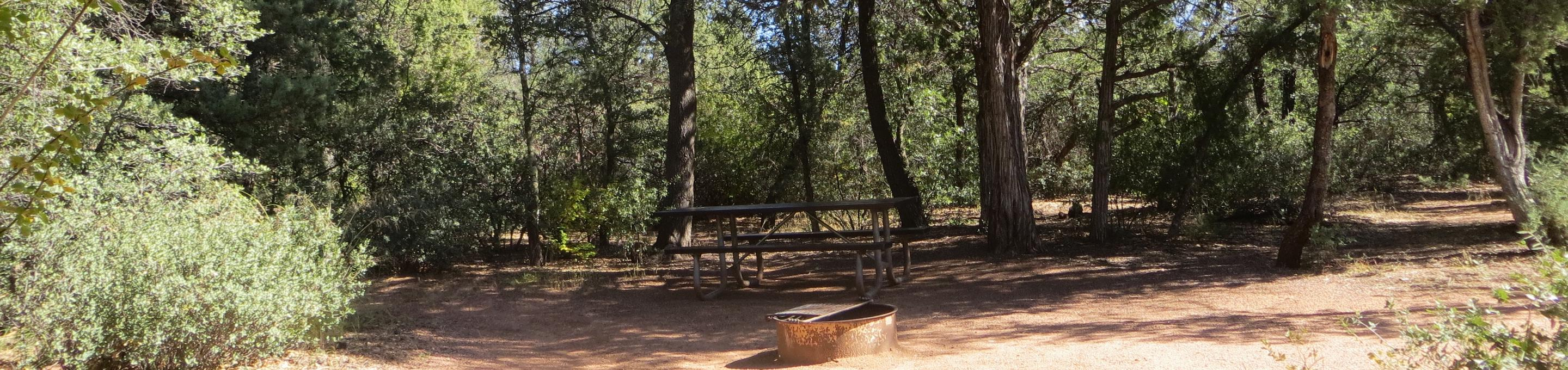 Houston Mesa, Horse Camp site #15 featuring shaded picnic area.