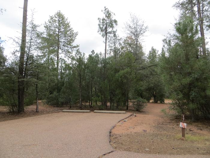 Houston Mesa, Black Bear Loop site #17 featuring parking and entrance to the wooded site.