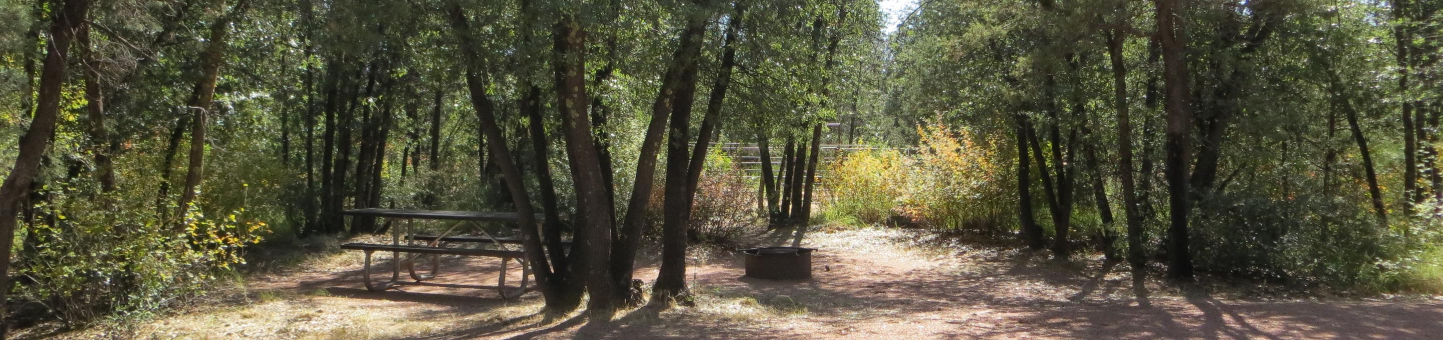 Houston Mesa, Horse Camp site #17 featuring shaded picnic area, camping space, and fire pit.