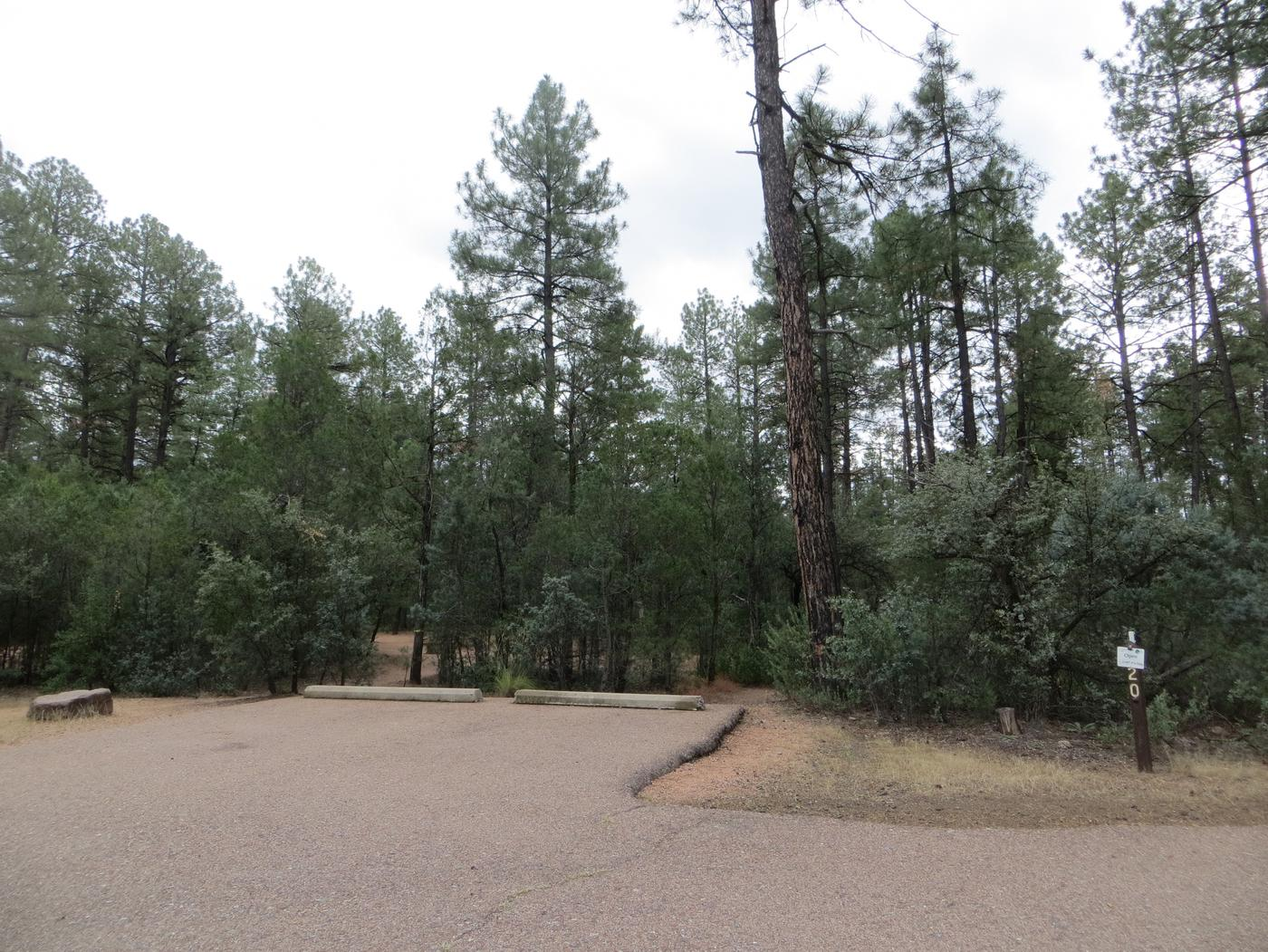 Houston Mesa, Black Bear Loop site #20 featuring parking and entrance to the wooded site.