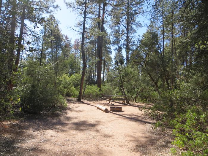 Houston Mesa, Black Bear Loop site #21 featuring entrance to the wooded site, fire pit, and picnic table.