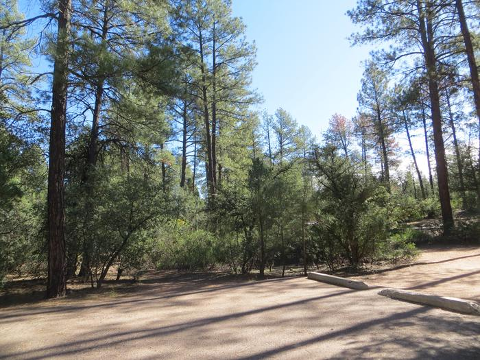 Parking space and entrance to site #21, Black Bear Loop at Houston Mesa.
