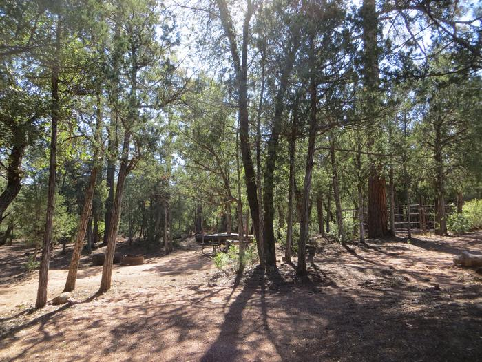 Houston Mesa, Horse Camp site #21 featuring camping space, picnic area, and horse corral.