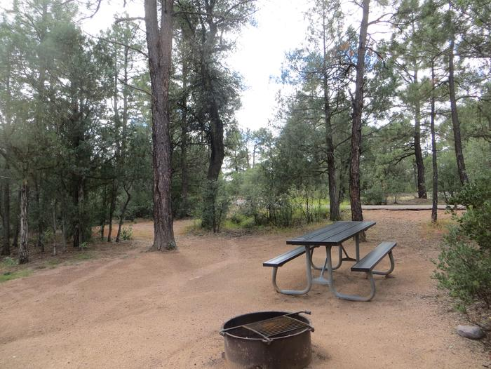Houston Mesa, Elk Loop site #22 featuring large camping space with picnic table and fire pit.