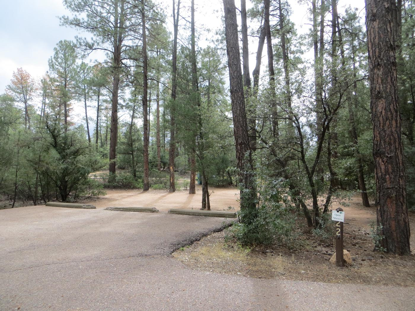 Houston Mesa, Black Bear Loop site #22 featuring parking and entrance to the wooded site.