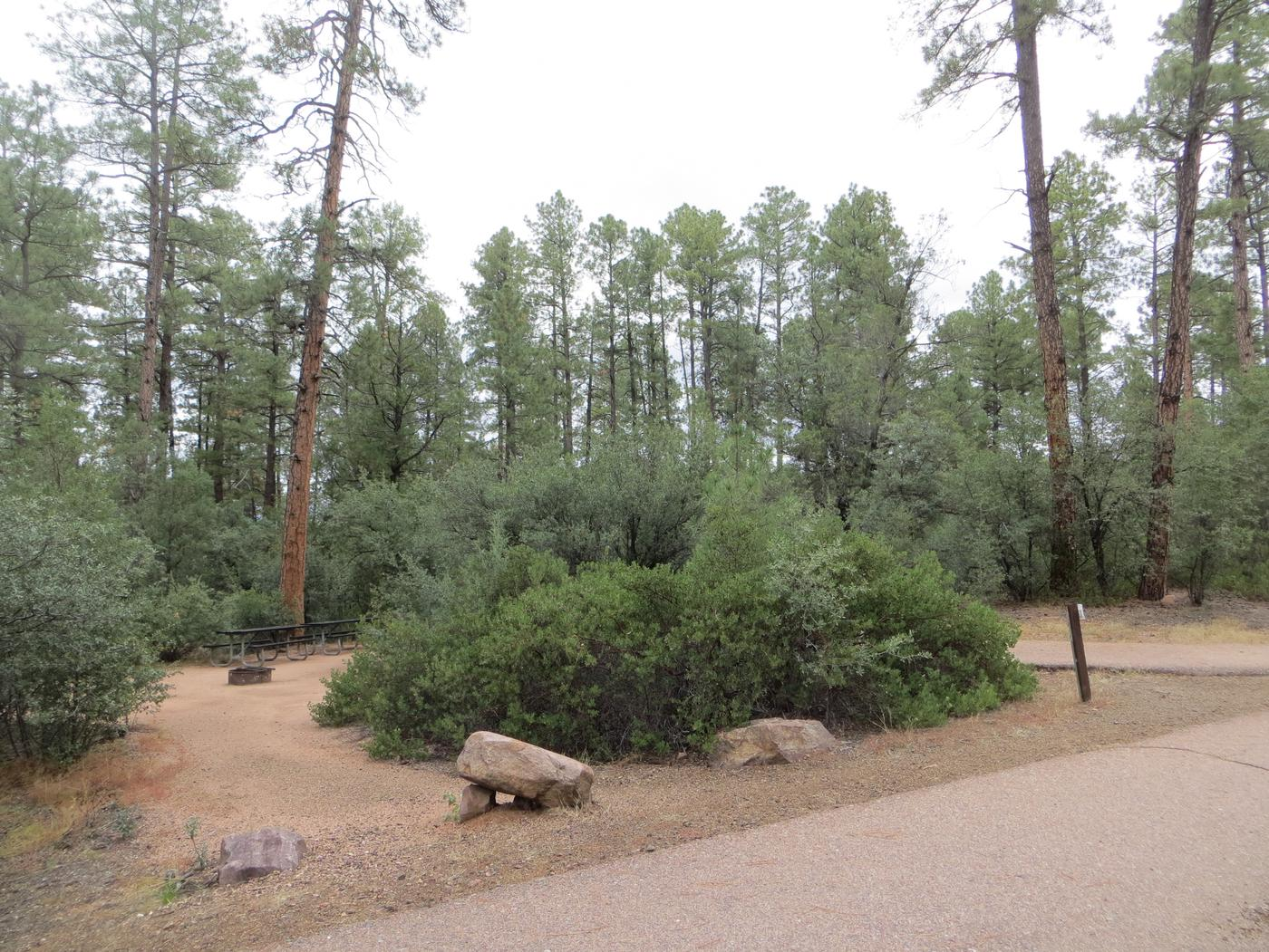 Houston Mesa, Black Bear Loop site #24 featuring parking, entrance to the wooded site, and picnic area.