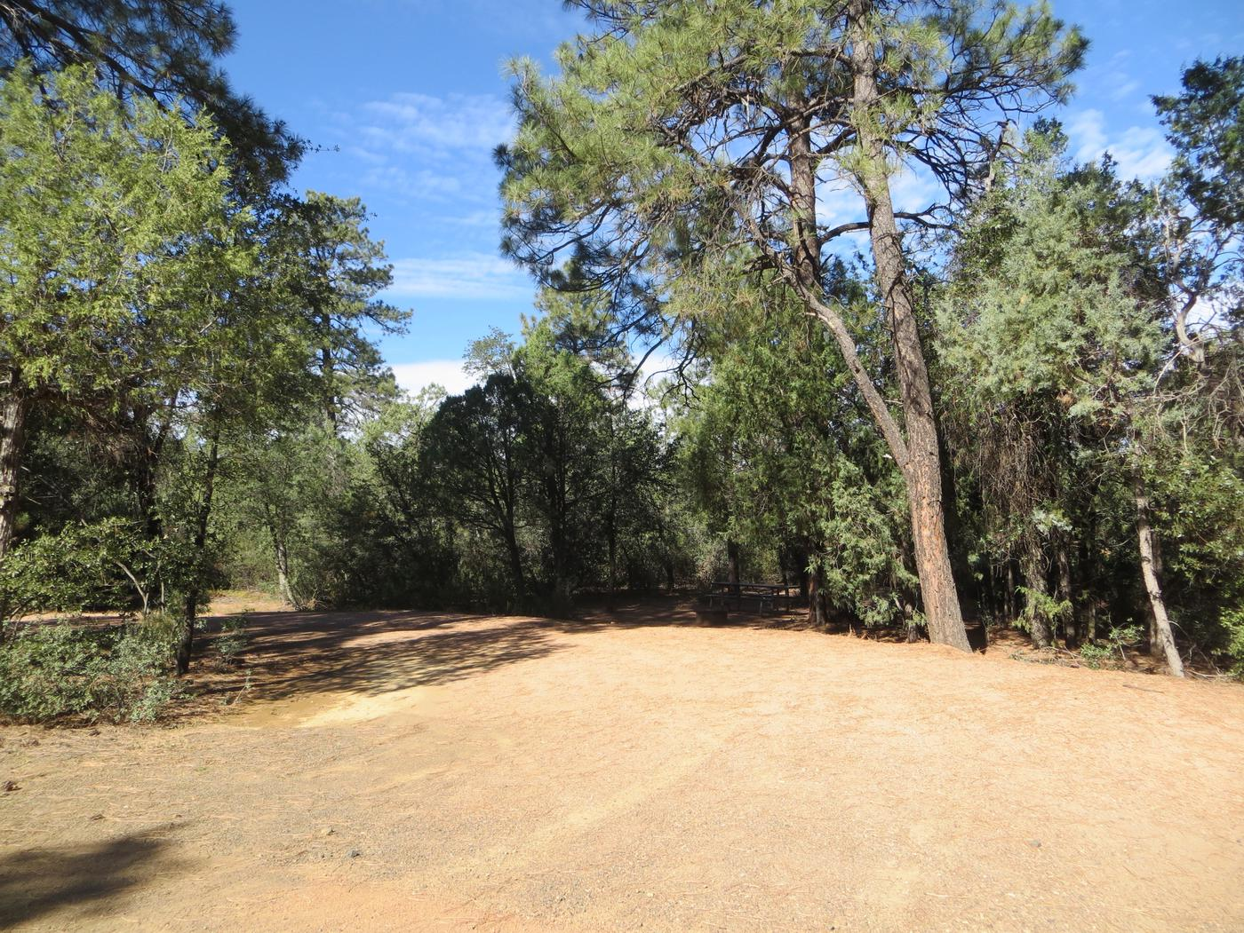Houston Mesa, Horse Camp site #24 featuring entrance and parking to the wooded site.