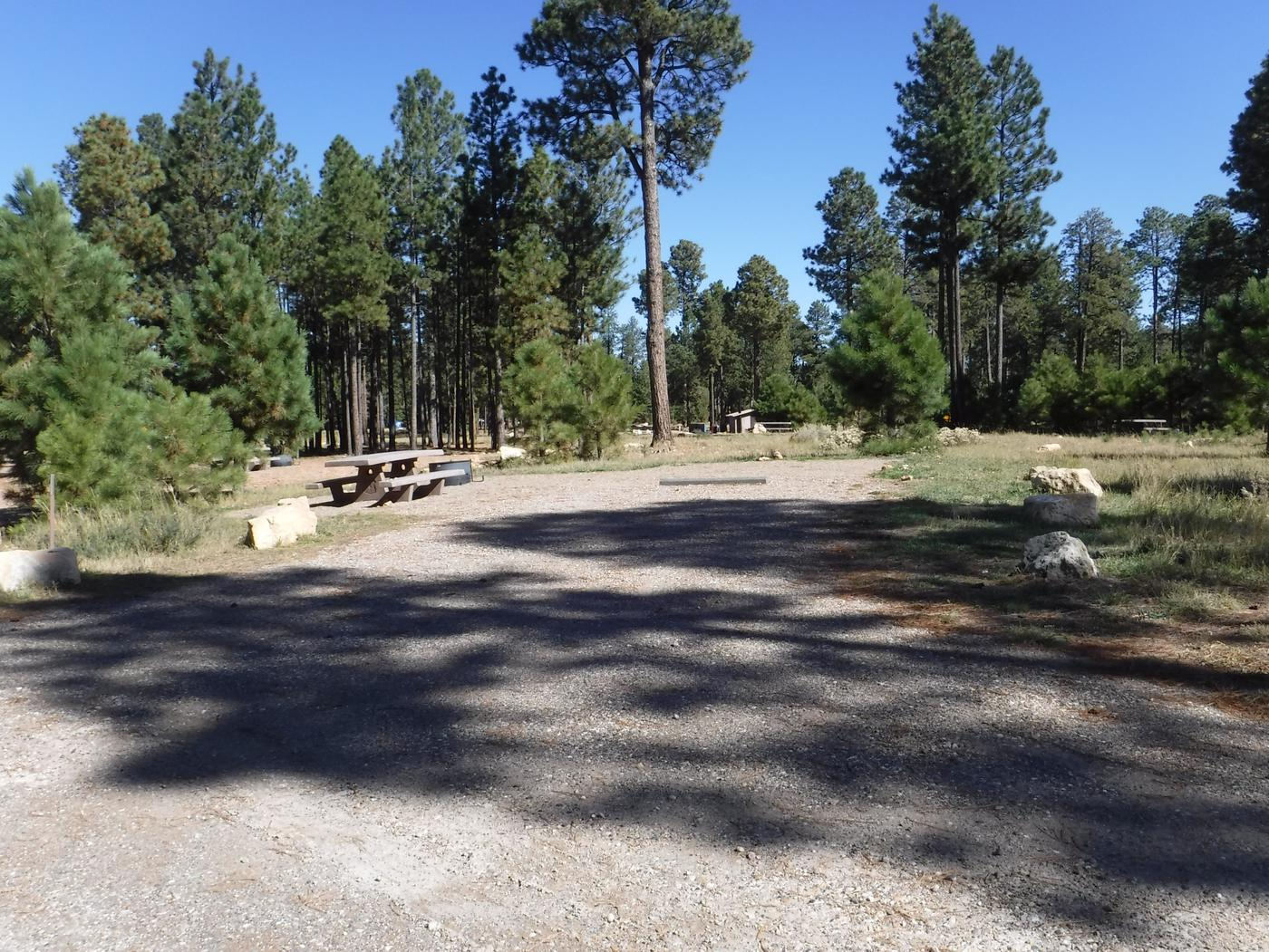 Jacob Lake site #11 featuring entrance, parking, and full camp space view.