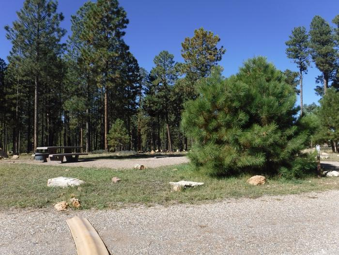 Jacob Lake site #19 featuring entrance, parking, and full camp space view.