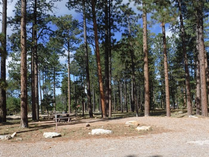 Jacob Lake site #26 featuring entrance, parking, and full camp space view.