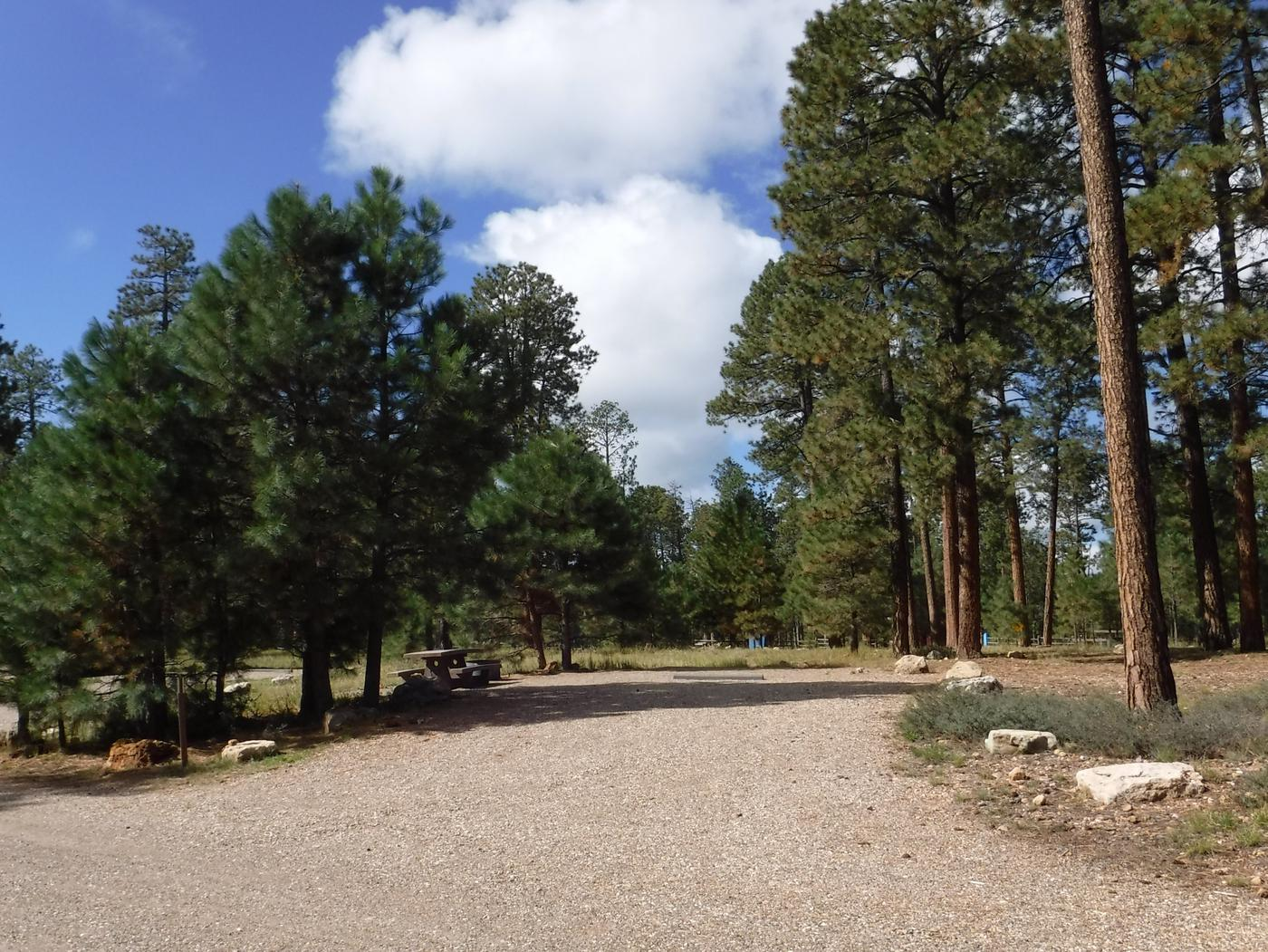 Jacob Lake site #32 featuring entrance, parking, and full camp space view.