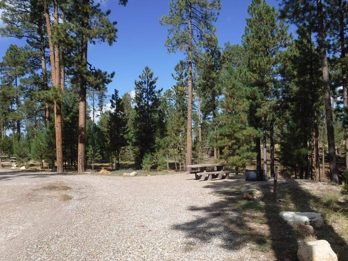 Jacob Lake site #36 featuring entrance, parking, and full camp space view.