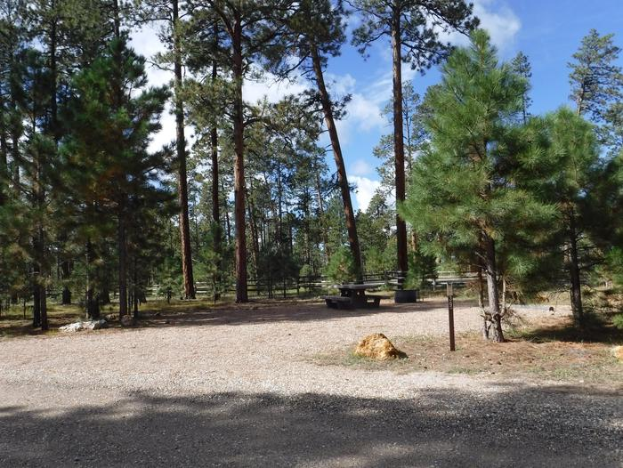 Jacob Lake site #39 featuring entrance, parking, and full camp space view.