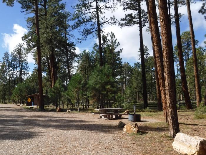 Jacob Lake site #41 featuring entrance, parking, and full camp space view.