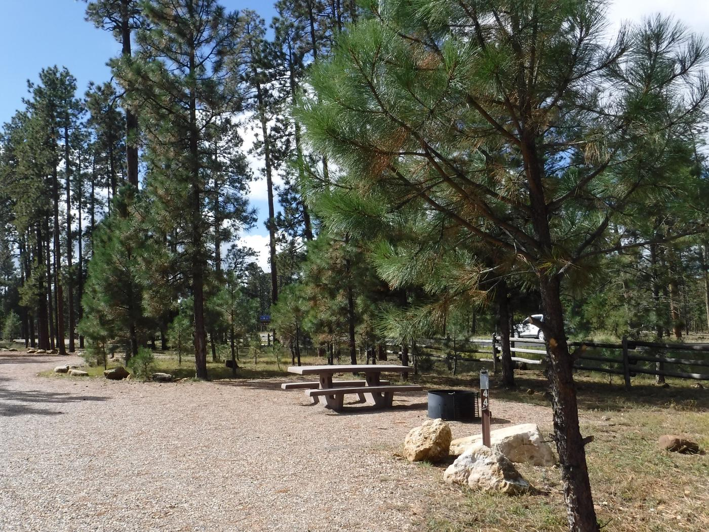 Jacob Lake site #44 featuring entrance, parking, and full camp space view.