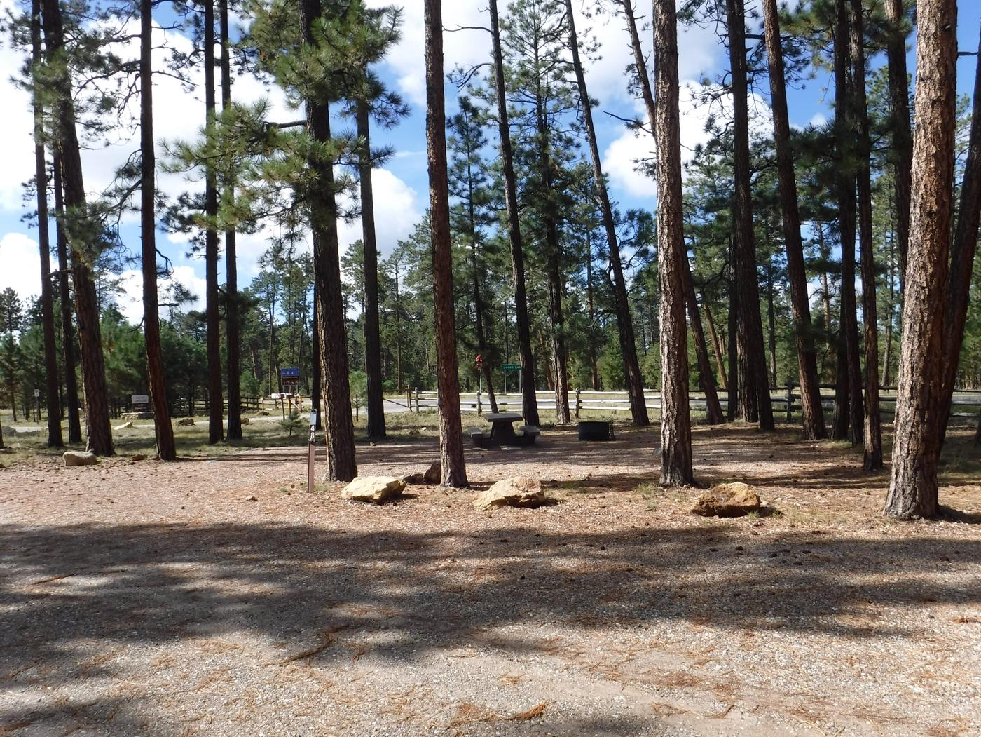 Jacob Lake site #48 featuring entrance, parking, and full camp space view.