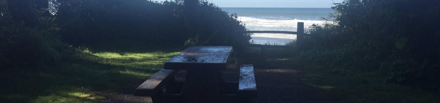Picture of campsite with picnic table near oceanCampsite D36