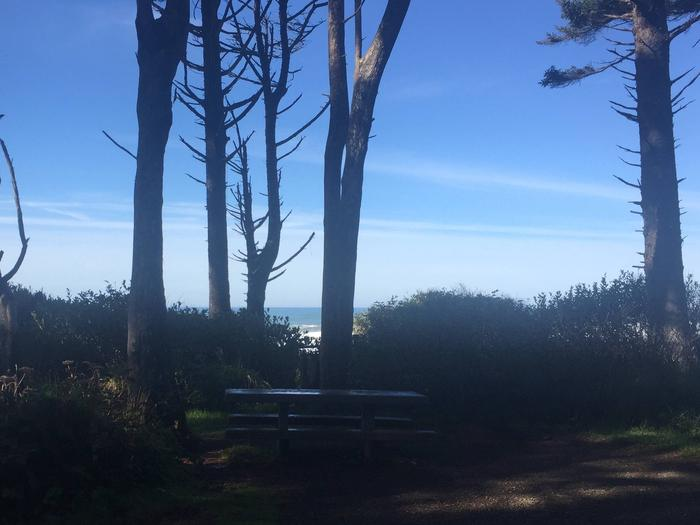 Picture of campsite with picnic table near oceanCampsite D37