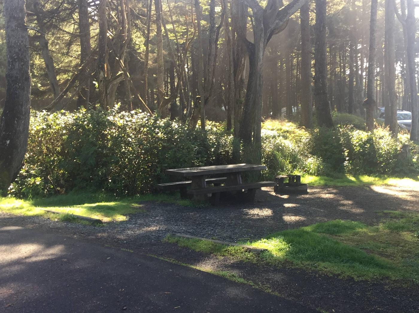 Picture of campsite with picnic tableCampsite D39