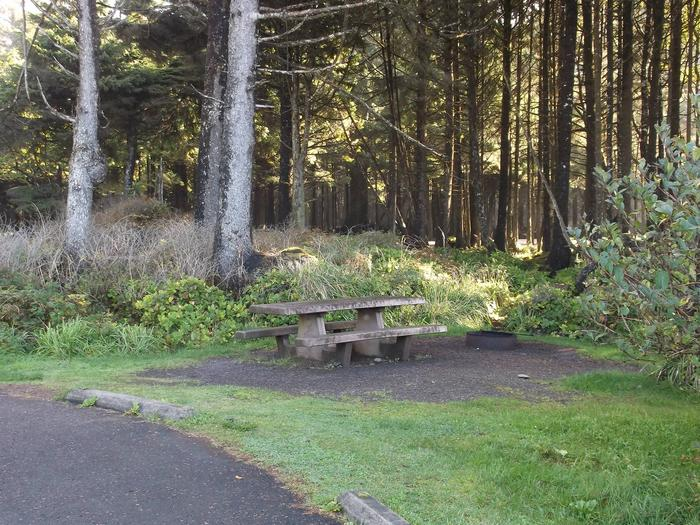 Picture of campsite with picnic tableCampsite E5