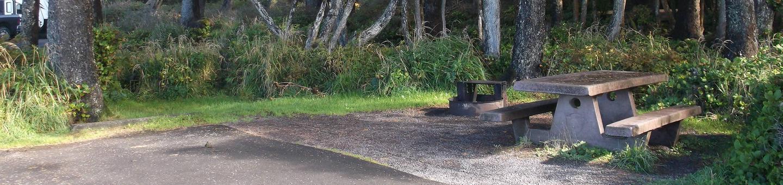 Picture of campsite with picnic tableCampsite E8